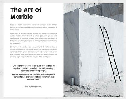 The Art of Marble - Eagle