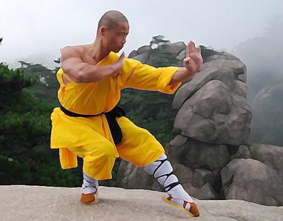 Shaolin Animations