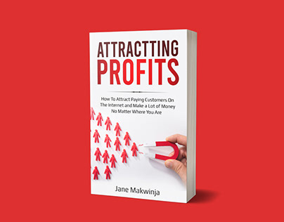 Attractting Profits book cover design