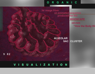Organic vis : 3d modeling & textures