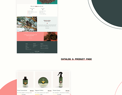 We the wild. Shopify eCommerce