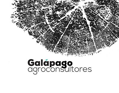 Branding for Galápago