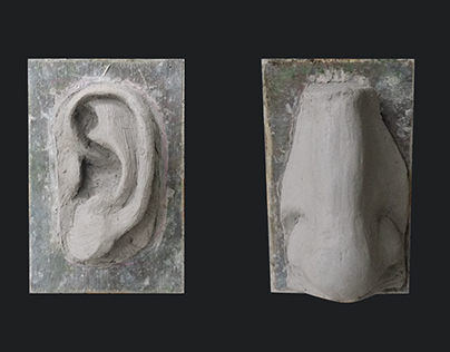 Facial Features Clay Model