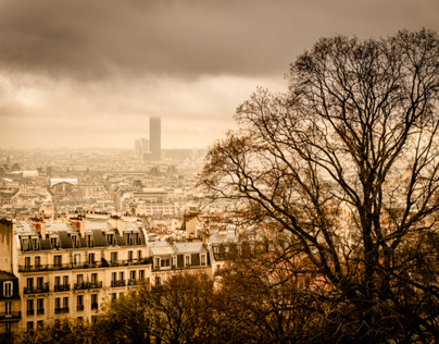 Winter Days in Paris