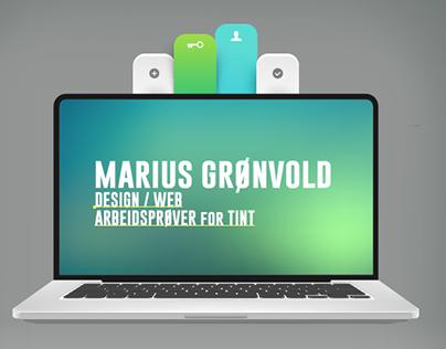 MARIUS GRØNVOLD ARBEIDS PRØVER FOR TINT 2016