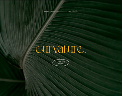 CURVATURE | massage studio branding