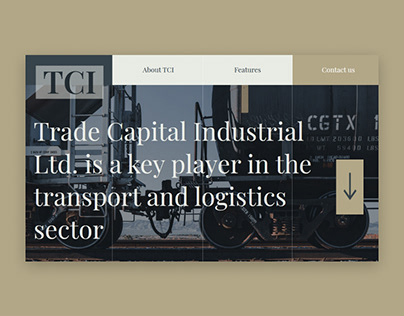 Web design for Trade Capital Industrial