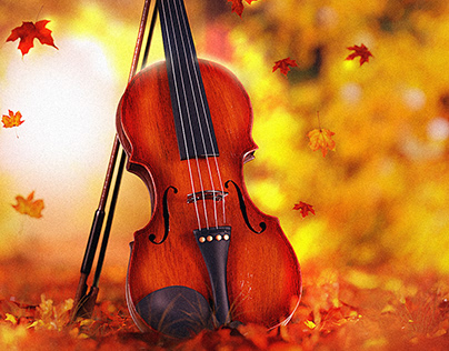 Violin in the Forest