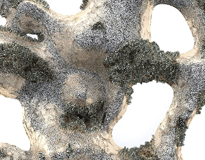 Nature-based Surfaces