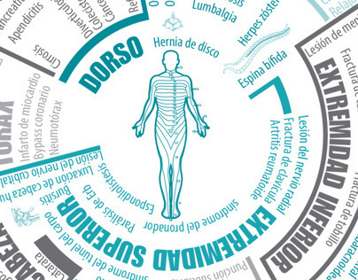 Infografía: Anatomía Humana