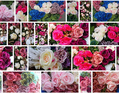 1,854 Flower stock photos, vectors, and illustrations