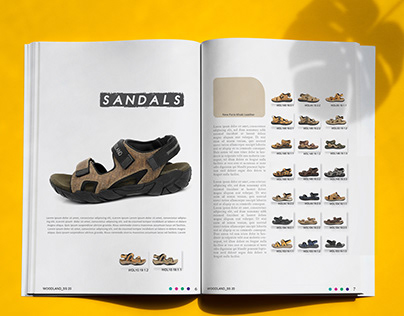 Booklet & Infographic - Woodland