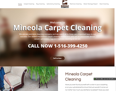 Mineola Carpet Cleaning