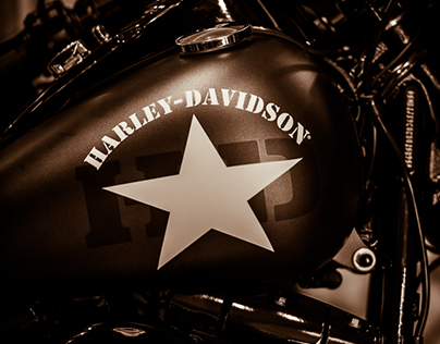 To all Harley lovers