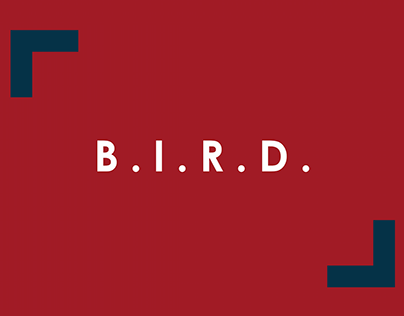 B.I.R.D. - Projeto de Endomarketing