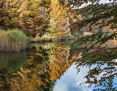 Colori d'autunno sul lago