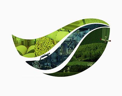 Innovatech Negócios Florestais