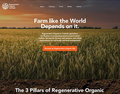 PATAGONIA | WEB DESIGN