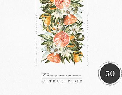 Watercolor Mandarin. Citrus illustrations, FREE wreath