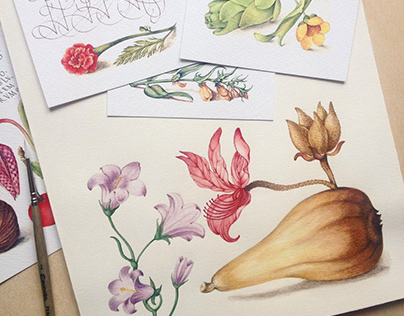 Copies of old illustrations