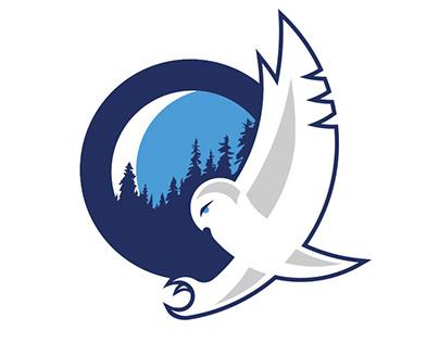 Identité visuelle: Nordiques de Québec