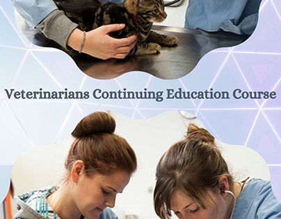Veterinarians Continuing Education Course