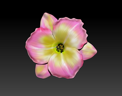 Flower Models for AR