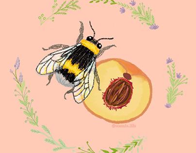 Peachy Bumblebee