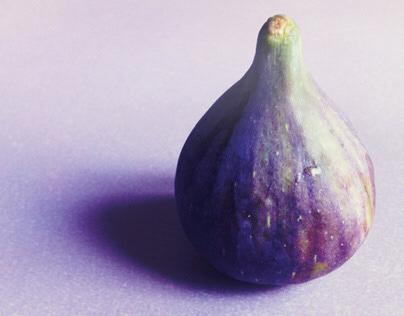 November Figs | Photography