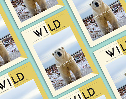 Wild : Born in forest, come with new spirit