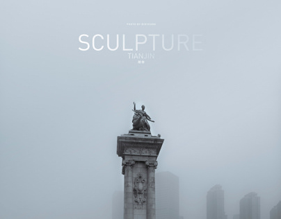 Sculpture in the haze