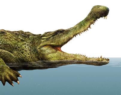 Crocodile Tribe