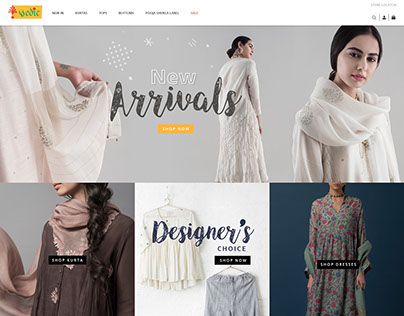 Vedic Website Design option