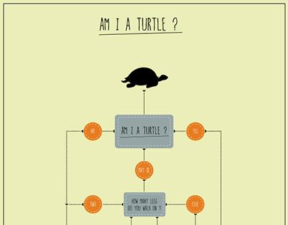Turtle Flow Chart