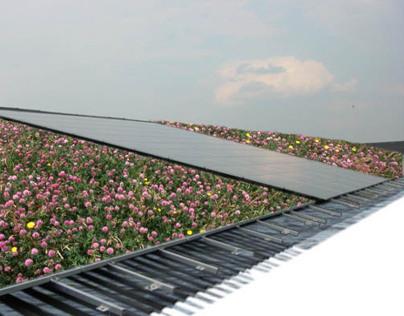 Emissie-filterend klimaatdak