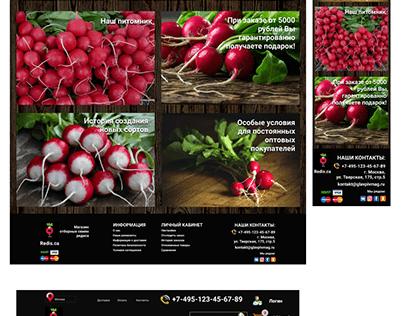 дизайн сайта магазина семян редиса