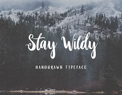 Stay Wildy - FREE FONT