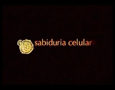 Musicalización de audiovisual - Sabiduría Celular