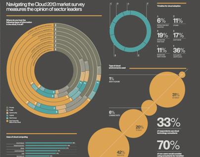 Infographic Survey: Navigating the Cloud
