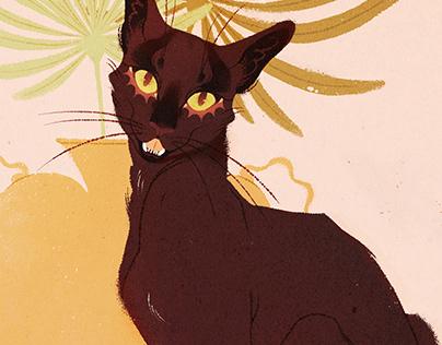 Still Life Cat Series