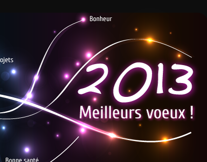 Voeux 2013
