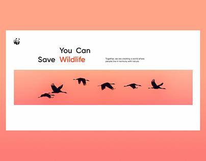 WWF – Redesign Website