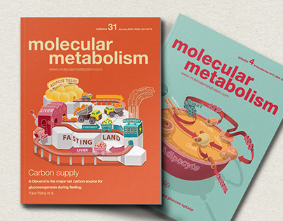 Info Illustration Molecular Metabolism Journal