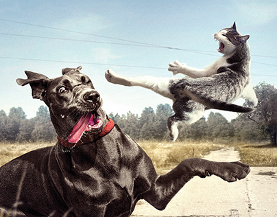 Vodafone - Pet Tracking System