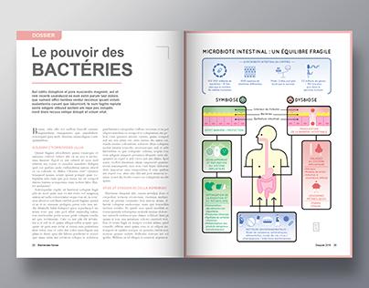 Université Paris Diderot • Bacteria