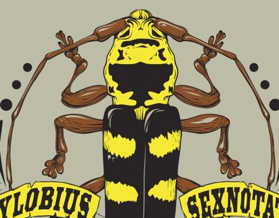 Longhorn beetle study