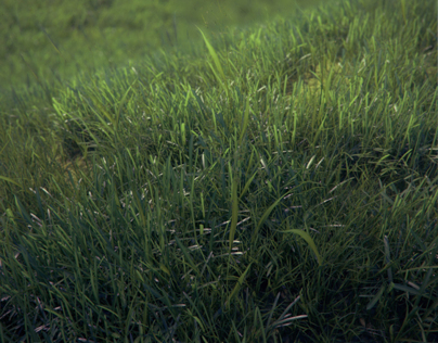VizPeople Photorealistic Grass