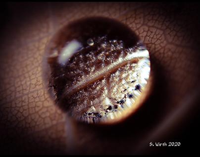 Droplets in the dark