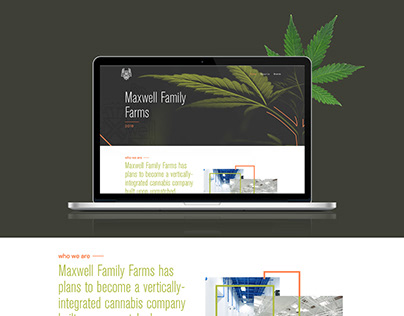 Website design for Cannabis extraction & processing