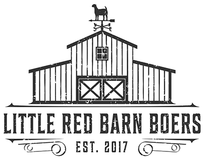 Little Red Barn Boers by Fourth Dimension Logo